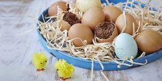 Eggshell Brownies via Sugar Free Brownies, Sugar Free Treats, Fructose Free, Cooking Recipes, Healthy Recipes, No Sugar Foods, Sugar Detox, Chocolate Brownies, Easter Recipes