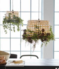 Dva koše IKEA GADDIS ozdobené zelenými vetvičkami a borovicovými šiškami a zavesené ako lampa.