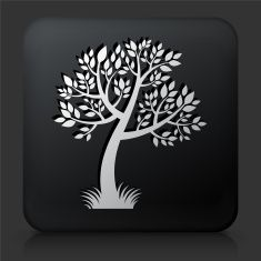 Black Square Button with Tree Icon vector art illustration
