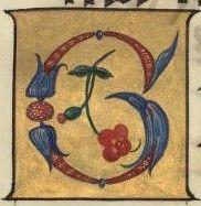 Chig. C. VIII.228 - 2r https://digi.vatlib.it/view/MSS_Chig.C.VIII.228