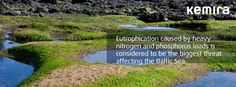 Eutrophication caused by nitrogen and phosphorus loads is considered to be the biggest threat affecting the Baltic Sea.