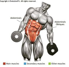 OBLIQUES - DUMBBELL SIDE BEND #gym #gymtraining #instafit #bodybuilding #bodybuilder #trainhard #bodybuildingmotivation #bodybuildinglifestyle #fit #fitness #fitnessaddict #muscle #physique #fitnessmotivation #workout #lifestyle #health #body #training #nopainnogain #lift #motivation #sweat #mensphysique #getfit #gymlife #gymmotivation #healthylifestyle #healthylife