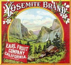 Yosemite Brand. Packed by Earl Fruit Company, Riverside, Calif.
