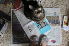 Rasputin and me, reading the papers on a Saturday morning.    from paperbagblog