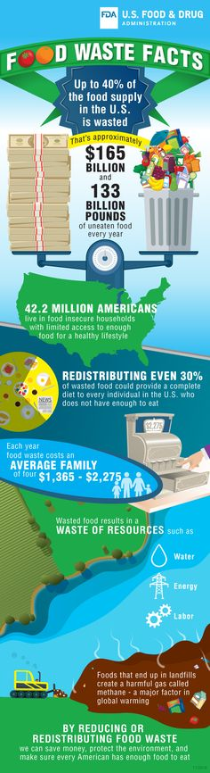 facts and stats – by reducing or redistributing food waste you can save money, help protect the environment, and make sure every American has enough food to eat. Foods To Eat, Us Foods, Restaurant Consulting, Help The Environment, American Food, Food Safety, Food Waste, Safe Food, Healthy Lifestyle