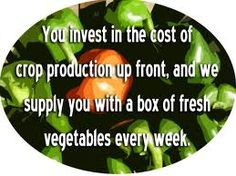 Find list of regional CSA or community supported agriculture organizations that use only sustainable and bio dynamic farming methods for locally grown produce.