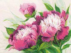 Pink Peonies Cross Stitch Kit By Riolis