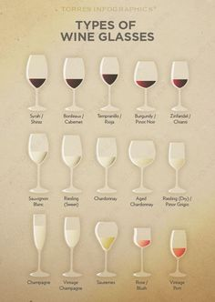 Types of Glasses Get in. Get Wine. Premium Wines delivered to your door. Get my FREE Mini Course on pairing wine and food. Types Of Wine Glasses, Wine Types, Types Of Drinking Glasses, Different Types Of Glasses, Liquor Glasses, Red Wine Glasses, Art Du Vin, Beer Calories, Wine Lovers
