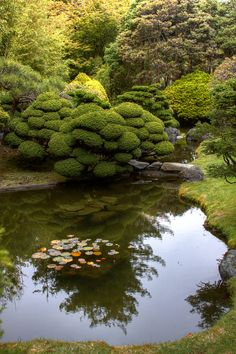 Reflections by Bill D Bell --- Taken in the Japanese gardens, San Francisco, Ca.