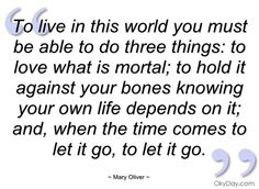 """""""To live in this world, you must be able to do three things:  to love what is mortal, to hold it against your bones knowing your own life depends on it, and, when the time comes to let it go, let it go.""""  MARY OLIVER"""