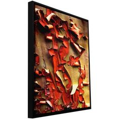 ArtWall Dean Uhlinger Madrone Bark Detail Floater Framed Gallery-Wrapped Canvas, Size: 24 x 32, Red