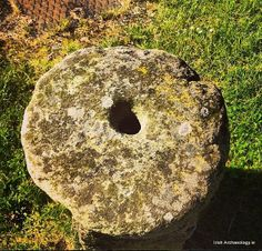 A small rotary quern stone, probably medieval in date, it was used to grind grain into flour. Enniscorthy, Ireland
