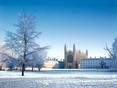 5 Top Tips for the Cambridge Law Interview - The Lawyer Portal Interview Advice, Best University, Blog Topics, Lawyer, Cambridge, Portal, How Are You Feeling, Tips, Counseling