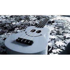 Guitarist : Foto