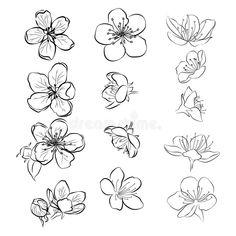 Flower Art Drawing, Flower Drawing Tutorials, Flower Sketches, Floral Drawing, Drawings Of Flowers, Art Of Flowers, Flower Tutorial, Tattoos Of Flowers, Bouquet Of Flowers Drawing