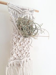 Macrame Plant Hanger/Air Plant Hanger/Macrame Air Plant Holder/Air Plant Holder/Boho Decor/Home Decor/Container/Planter