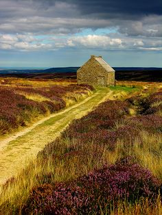 Trough House, North York Moors national park in North Yorkshire, England. Photo by by Ray Tough.