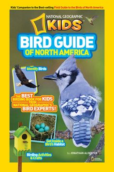 """New in the library is the National Geographic Kids Bird Guide of North America, a fun, colorful introduction to 112 species for kids ages 8 and up. It features common birds like Northern Cardinal, Blue Jay, and Osprey, range-restricted species like Elf Owl and Black Skimmer, and four pages of """"Rock Star Birds"""" (California Condor, Emperor Penguin). Plus, young readers can learn how to draw a bird and how to make a bird feeder out of a soda bottle."""