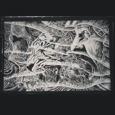 #drawing #oriental #skull #tiger #shogun #lotus #dotting