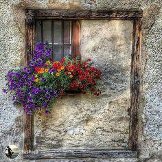 Beauty by the window Ventana Windows, Flower Window, Cool Doors, Through The Window, Window View, Window Dressings, Stone Houses, Window Boxes, Door Knockers