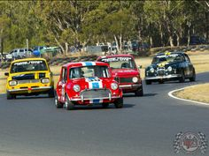 Now that's a track full of Sunday Screamers!  Of course the Mini is the class of the field...