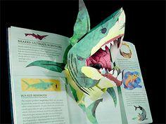 Book 17 of 872. Prehistoric Sharks by the contemporary master of pop-ups, Robert Sabuda.