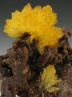 Legrandite | Minerals | Scoop.it