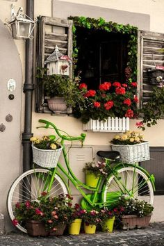 Window box and bicycle Bicycle Decor, Bicycle Art, Window Boxes, Yard Art, Garden Projects, Container Gardening, Outdoor Gardens, Beautiful Flowers, Exotic Flowers