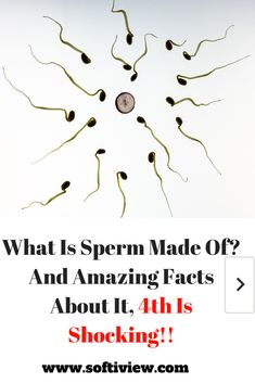 Did you know that it takes 3 months for sperm to be produced? What Is Sperm Made Of? Well, the structure & properties of sperm are way more complicated than you think! 3 Months, Did You Know, Knowing You, Thinking Of You, Fun Facts, Take That, Science, Amazing, Thinking About You