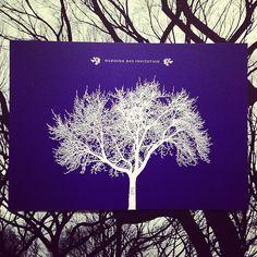 Midnight Blue Wedding Invite - The Ink Closet