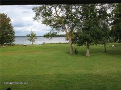 Bass Lake Near Perth - Perth Cottage Rental Cottage Rentals, Bass Lake, Perth, Golf Courses, Plants, Beautiful, Plant, Planets