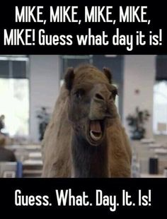 HUMP-DAYYYYY!!!!  W00-hoo!  Everyone says it.  Love this commercial!!!♥♥ LOVE THIS ♥♥