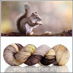 SQUIRREL 'RESILIENT' SUPERWASH MERINO SOCK YARN by expression fiber arts - for knitting, crochet, weaving