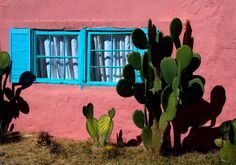 House at Tubac by Sandy Kwas on Capture My Arizona // Where else in the country can people paint their houses this shade of pink?  But it works so well in Arizona.