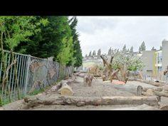 Natuurspeeltuin | Jan van Schaik