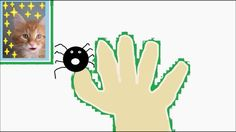 The Finger Family Funny Crazy Spider Family | Finger Songs For Children