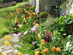 ben pentreath's garden