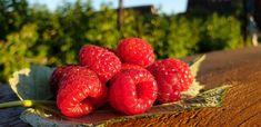 Raspberry, Strawberry, String Art, Fruit, City, Nature, Handmade, Food, Naturaleza