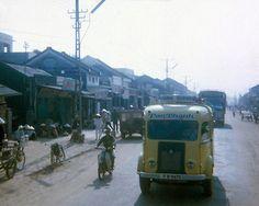 Người Việt Bốn Phương