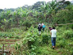 EntreMundos Community Tourism Programme Guatemala