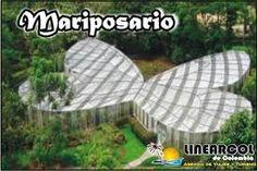 Mariposario en el Eje Cafetero, Colombia Armenia, Country, Outdoor Decor, Beautiful, Pereira, Coffee Area, Colombia, Butterfly House, Earth