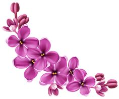 Spring Pink Floral Decor PNG Picture Clipart