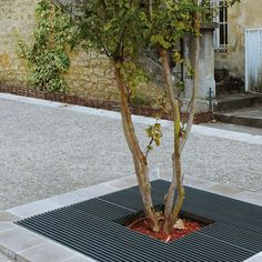 Galvanized steel tree grate BALTIMORE AREA