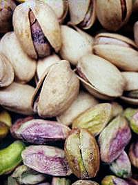 Pistachio.  It is a small tree originally from Persia (Iran), which now can also be found in regions of Iraq, Syria, Lebanon, Turkey, Greece, Tunisia, Kyrgyzstan, Tajikistan, Turkmenistan, India, Pakistan, Egypt, Sicily, Uzbekistan, and possibly, Afghanistan (especially in the provinces of Samangan and Badghis), as well as in the United States, specifically in California. The tree produces an important culinary nut.