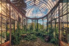 Chateau Rolls Royce Belgium abandoned overgrown greenhouse Chateau Rolls Royce is an abandoned Belgian century chateau, with a spectacularly overgrown greenhouse and orangery (orangerie). Derelict Places, Abandoned Places, Victorian Greenhouses, Large Greenhouse, Exposition Photo, Jungle House, French Photographers, Photorealism, Urban Exploration
