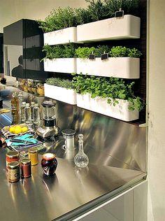 Вертикальный сад на кухне.