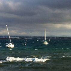Downwind paddle 40 knots in harbour.www.eastcoastpaddler.co.nz