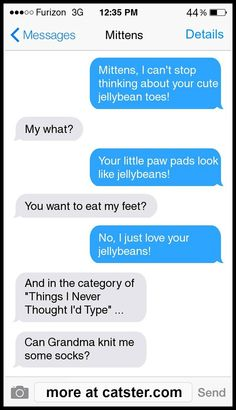 It's a brand new collection of Texts from Mittens on Catster -- click to read all eight!