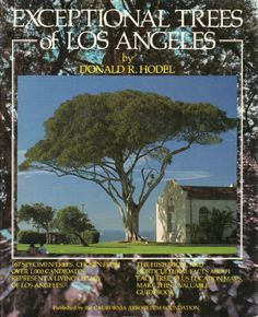 Exceptional Trees of Los Angeles by Donald R. Hodel, http://www.amazon.com/dp/0962112100/ref=cm_sw_r_pi_dp_3cbLsb0XGV5FB
