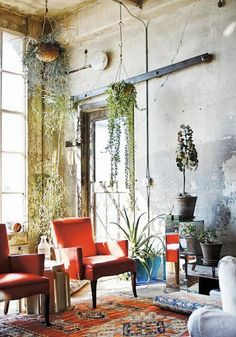 Beau Monde Mama: DREAM INTERIORS - INDOOR HANGING PLANTERS